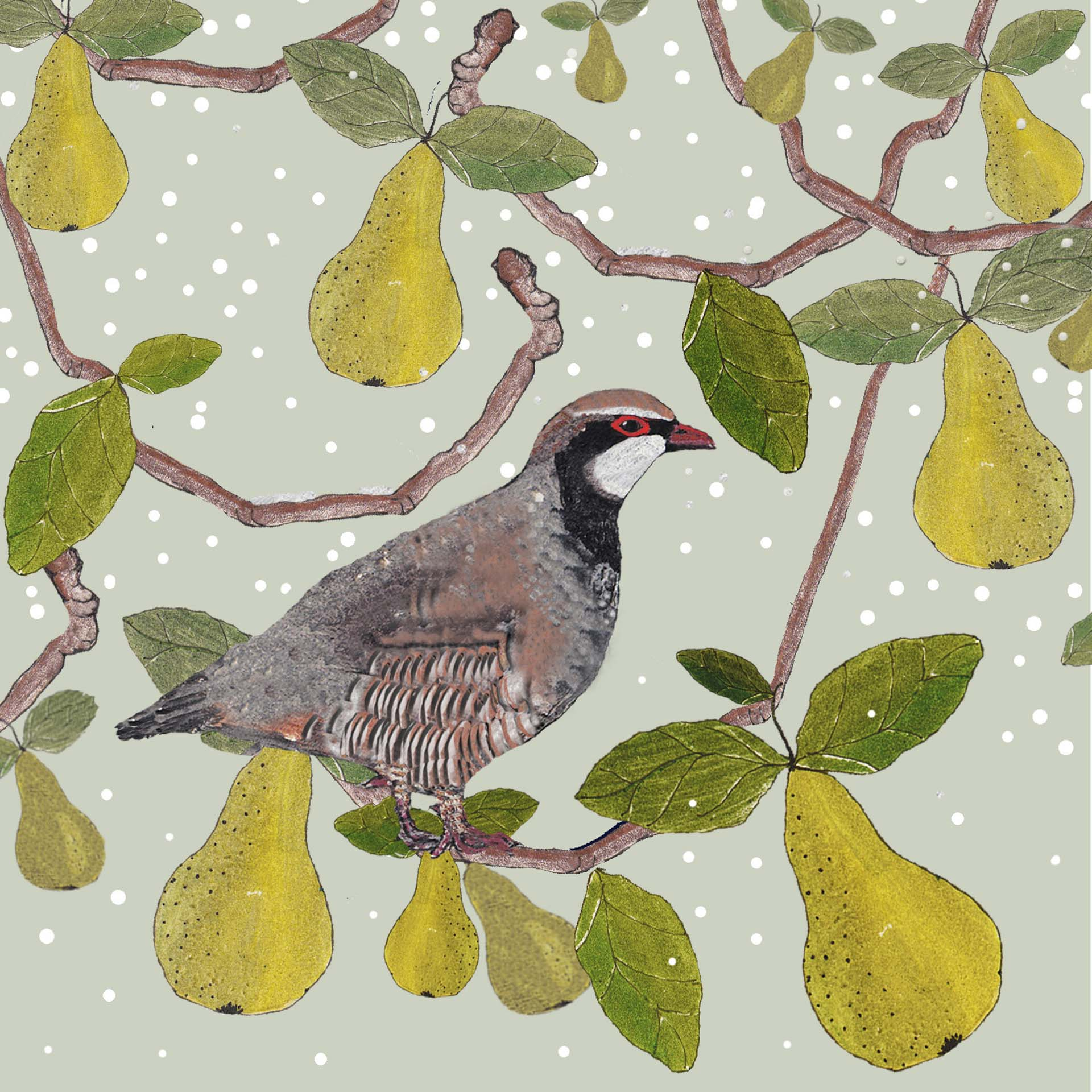 granite worktops at christmas A partridge in a Pear Tree for Brett from Jade
