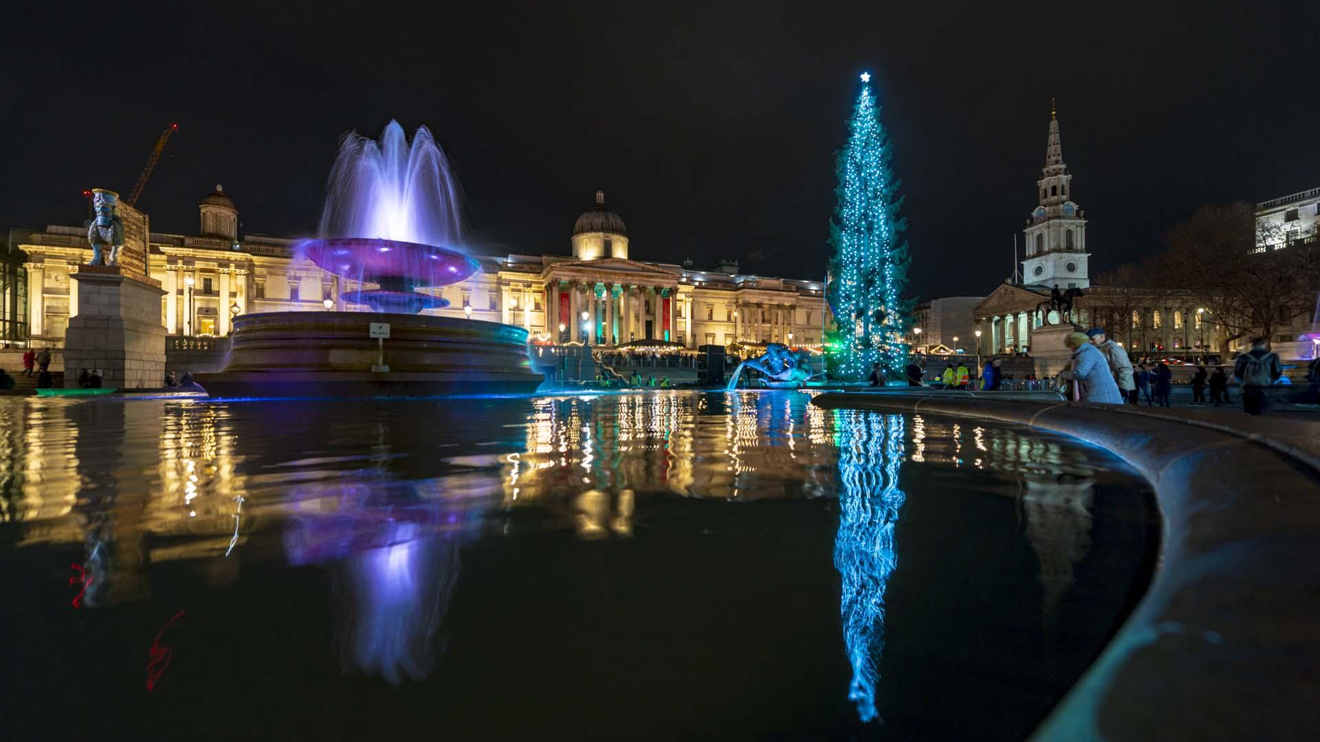 SA Trafalgar Square Christmas Tree Andrew King Photo 191205 195752a