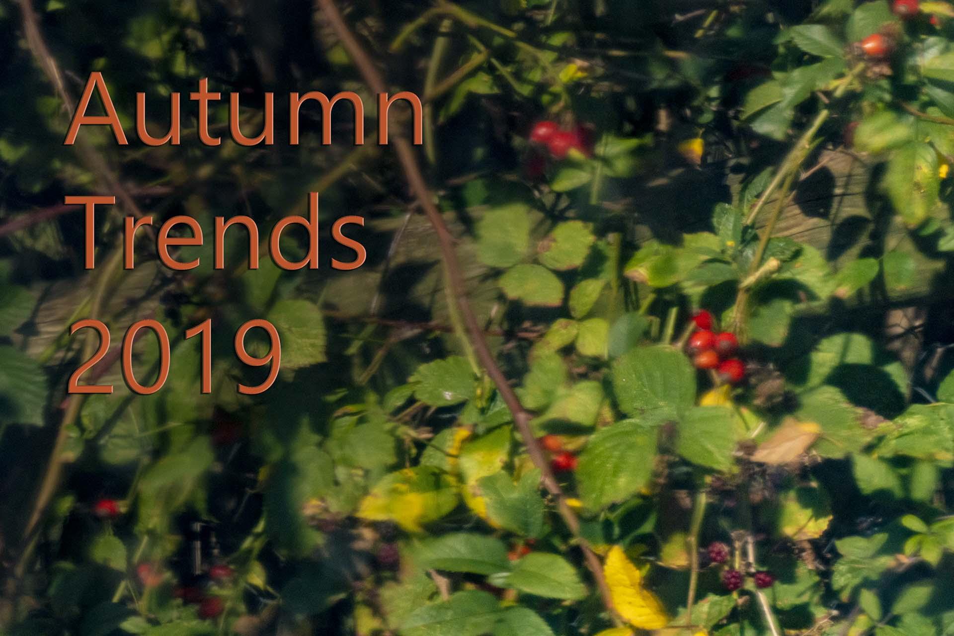 autumn trends 2019 kitchen worktops reflection black pearl granite rose hips red